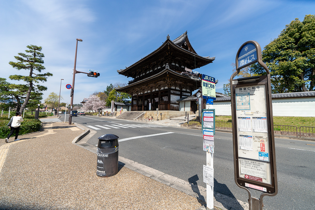 2020年4月7日(火)、観光客のいない、御室仁和寺