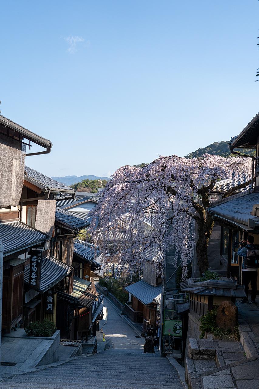 2020年3月23日(月)、観光客のいない京都・産寧坂(三年坂)