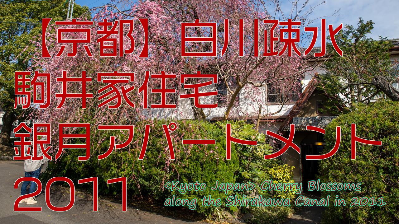 【京都】白川疎水、駒井家住宅・銀月アパートメント 2011|〈Kyoto Japan〉Shirakawa CanalSakura at Komai House/Gingetsu Apartmentサムネイル