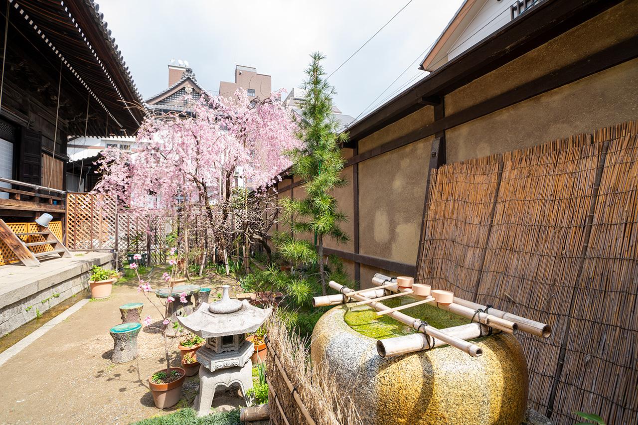 因幡薬師(平等寺)