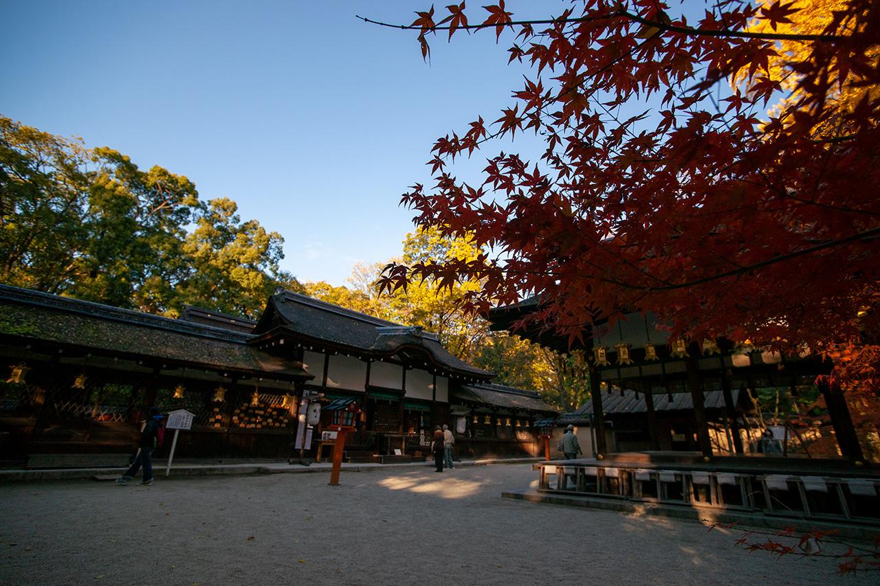 下鴨神社(しもかもじんじゃ)