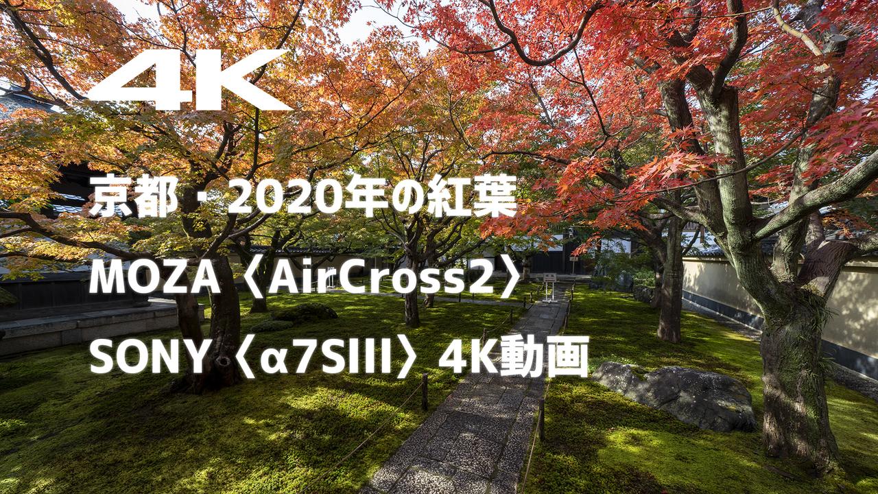 京都・2020年の紅葉を、MOZA〈AirCross2〉とSONY〈α7SⅢ〉の4K動画で撮ってみた。