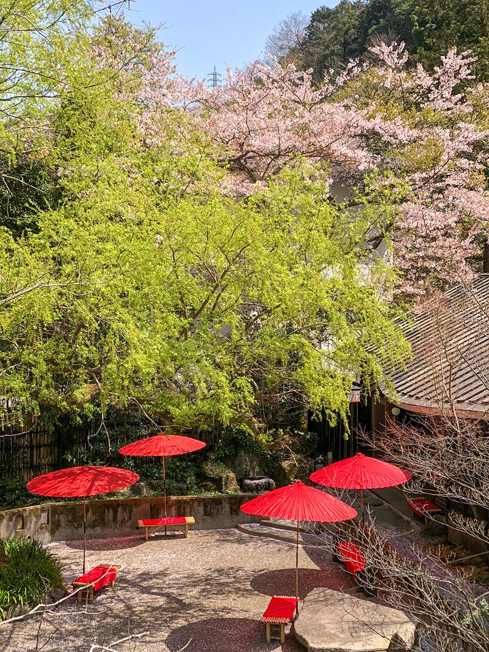 箱根湯本温泉〈天山湯治郷〉の中庭