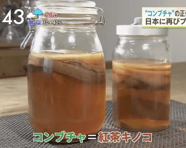 コンブチャ(紅茶キノコ)