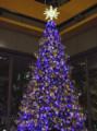 12/07 巨大なツリーは12色に変化するそうな~(於 丸ビル)