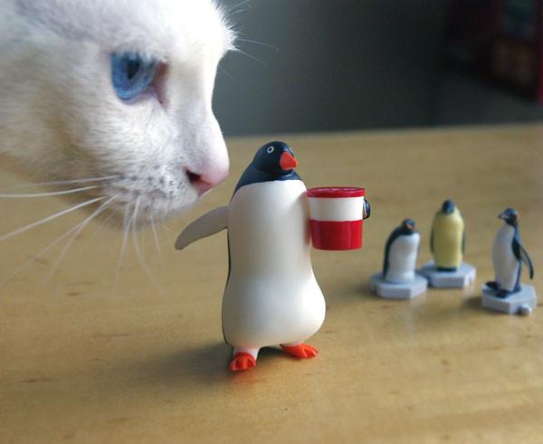 """2/8 友人に貰った""""食べすぎペンギン""""を撮影していたら、またも怪獣が"""