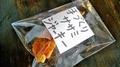 中浦和,ドッグカフェ,別所沼公園,レインドックス(RAIN DOGS)メニュー