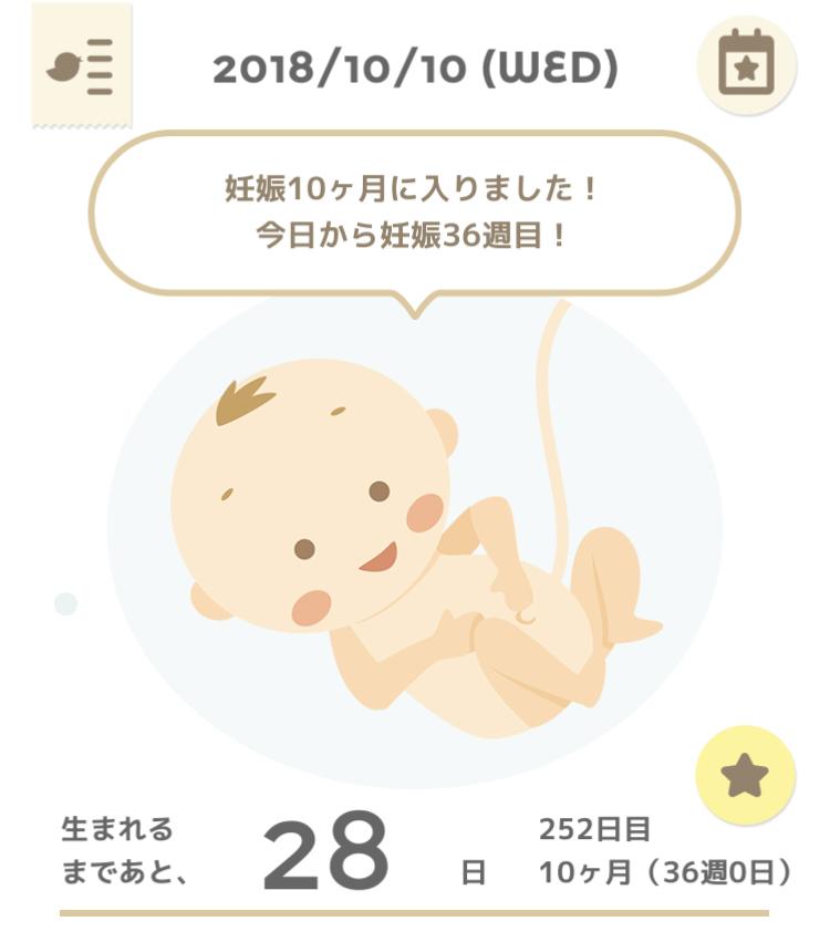 f:id:setomachiko:20181013141652j:plain