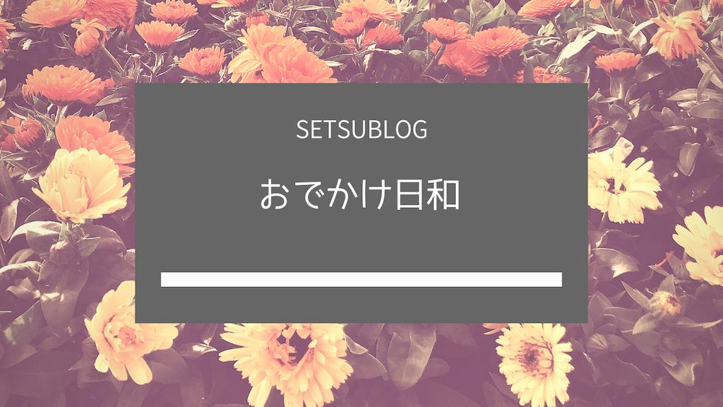 f:id:setsublog:20190328223119p:image