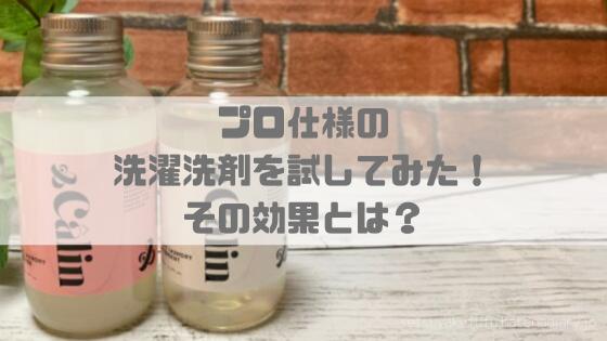 f:id:setsuyakufufu:20190814193118p:plain