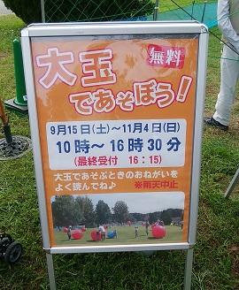 f:id:setuyakukosodate:20181005201156j:plain