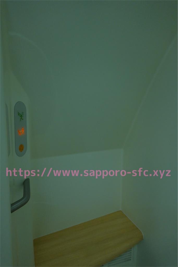 f:id:sfcsapporo:20190414130232j:image