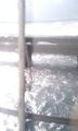 上手く撮れなかったけど、浜名湖の橋は水面が近くて怖い。といつも思