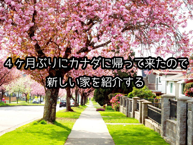 f:id:sgwshu:20170503055337j:plain