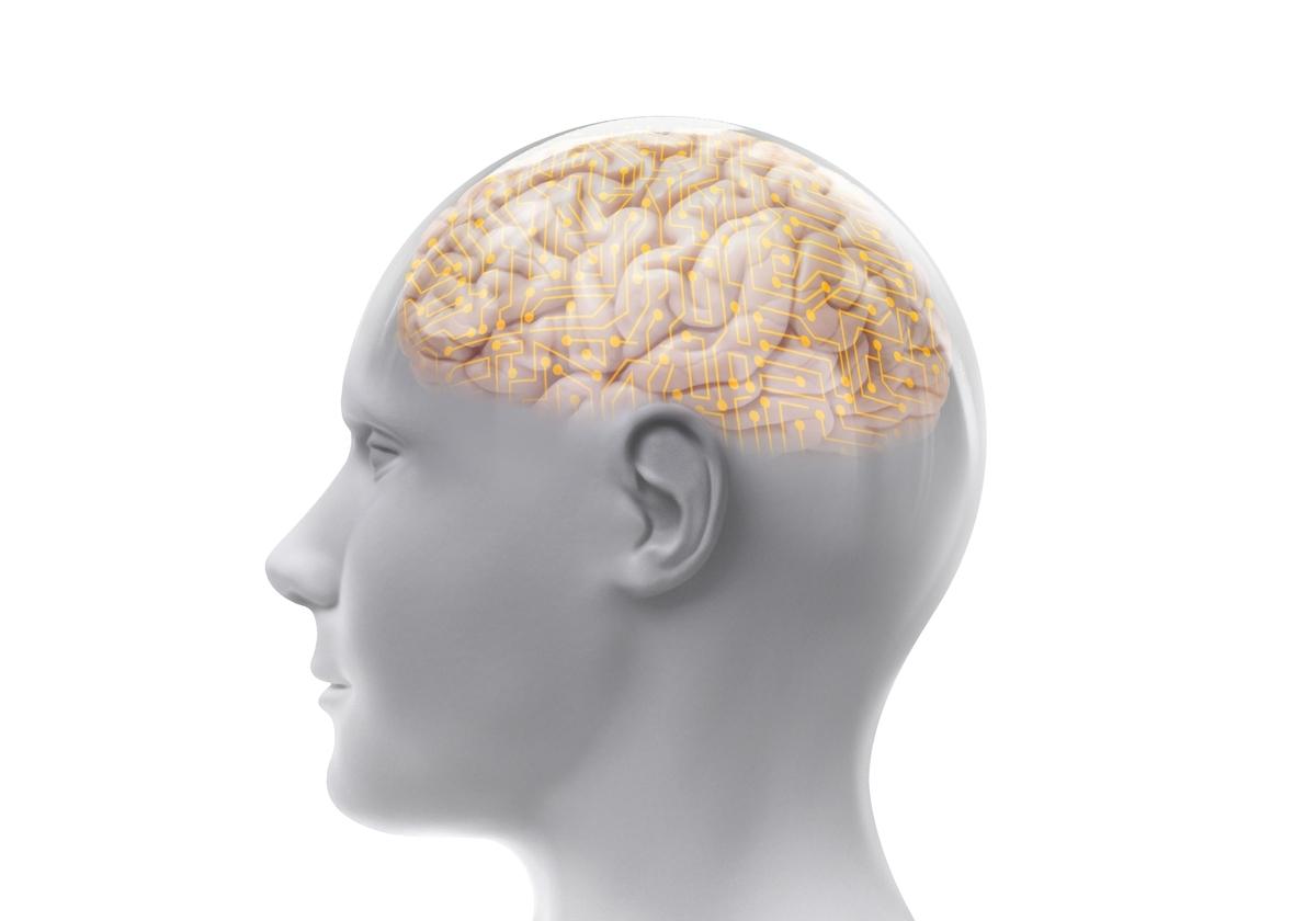 記憶法には適齢期がある。大人の「英文法の覚え方」への脳科学的な答え-02