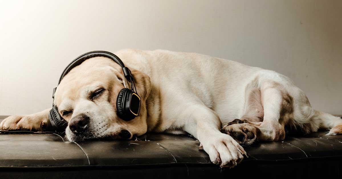 集中できる音楽-04