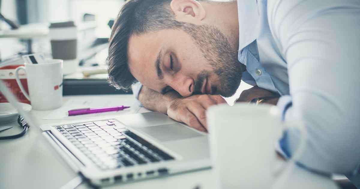 睡眠と学習の関係2