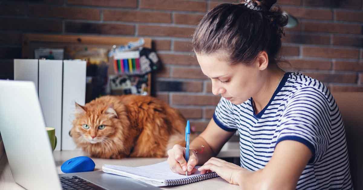 楽しい勉強法2