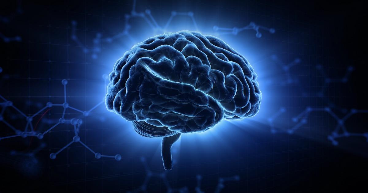 脳をチャージ01