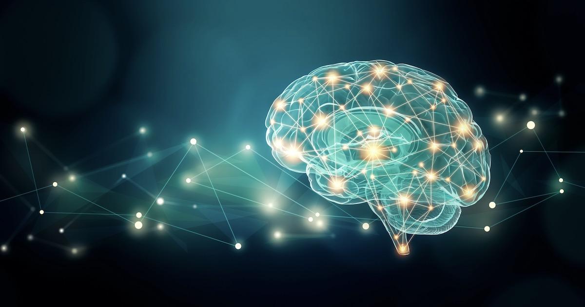 脳番地を鍛える01