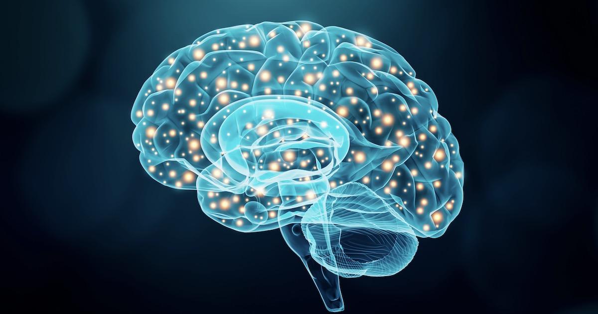 脳番地を鍛える02