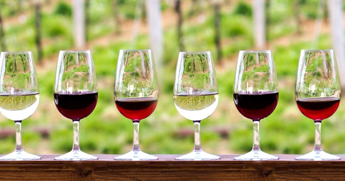 さまざまなワインの画像。心の持ちようの力が示された研究のイメージ