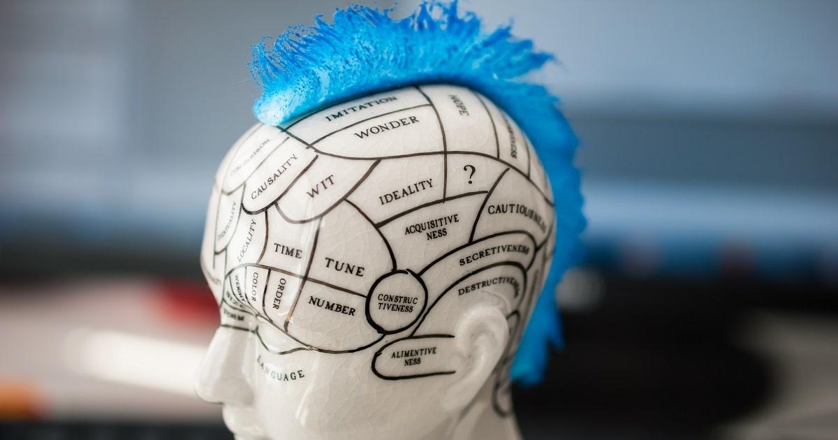 人間の脳の部位と各部分の機能。なぜかモヒカン