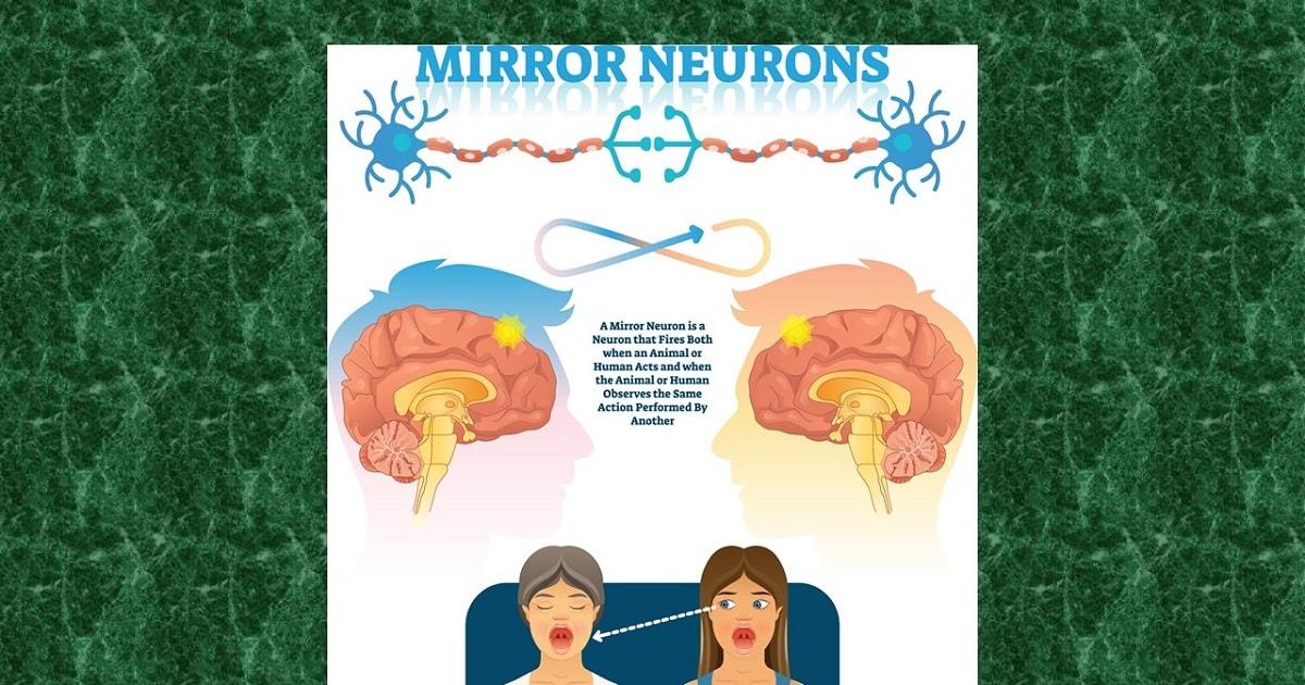 ミラーニューロンを表したイラスト
