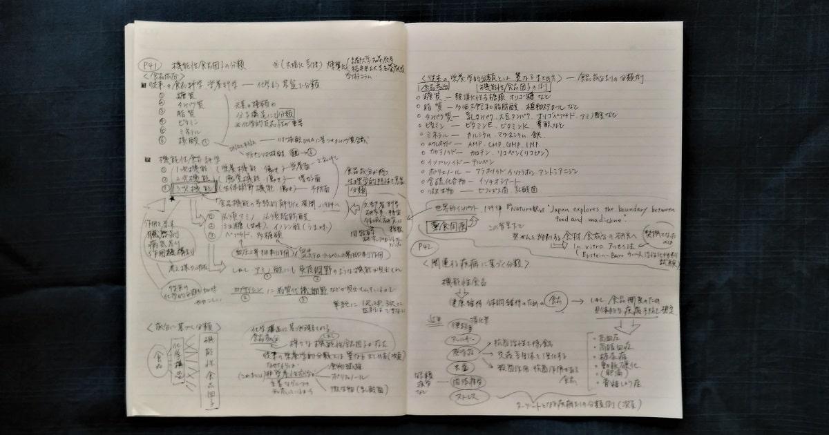 モニタリング勉強法の前段階で、機能性食品化学について勉強したノート