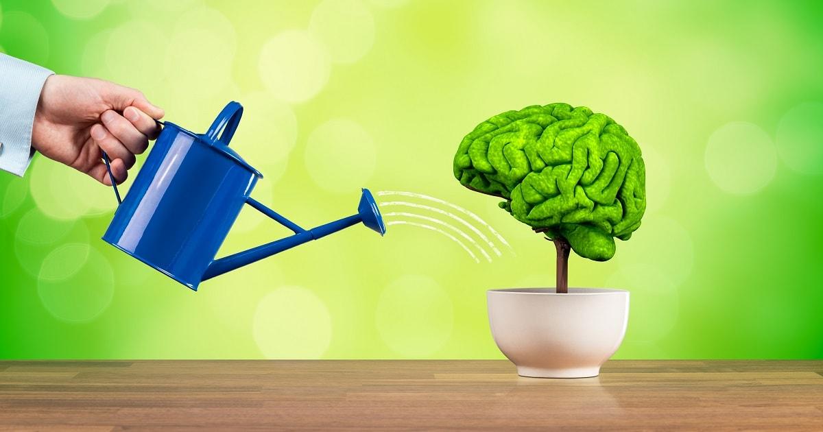 脳に水を与え、どんどん成長していく予感を示すイラスト