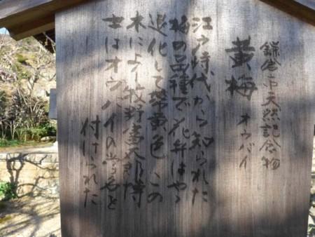 f:id:shajimatsu:20180302152543j:image:W300