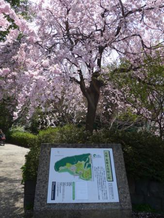 f:id:shajimatsu:20180401120957j:image