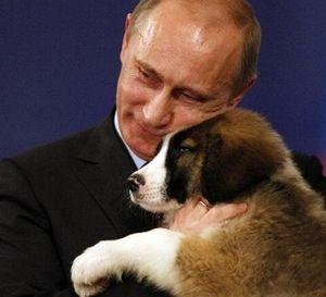 f:id:プーチンと犬