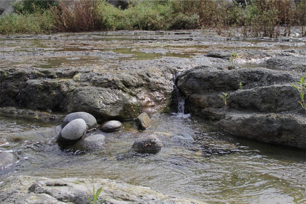 f:id:鬼怒川の流木