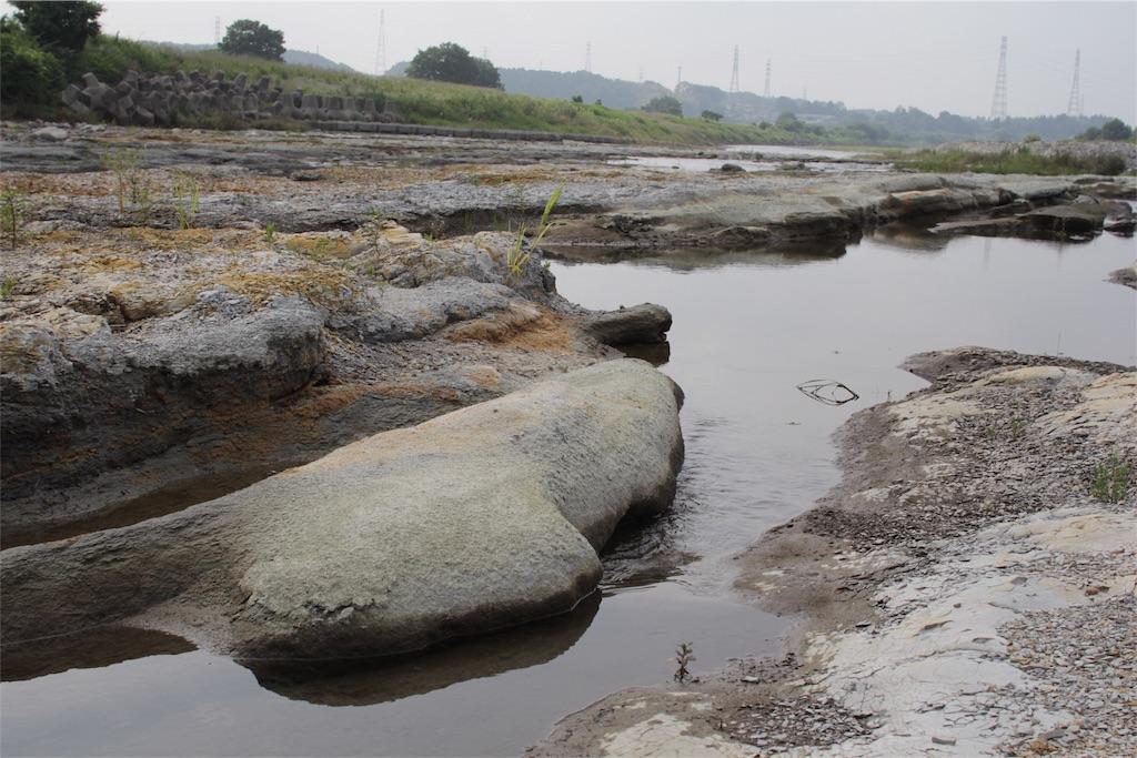f:id:鬼怒川の河原