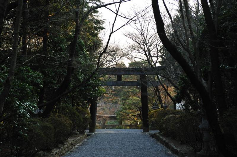 f:id:shakuyamame:20100102152835j:image