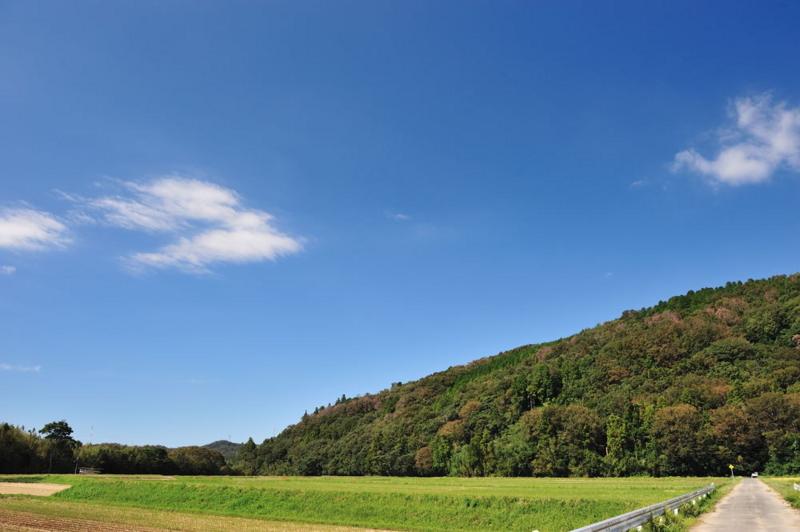 f:id:shakuyamame:20110924140159j:image