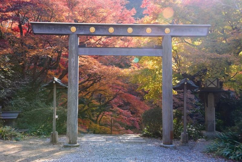 f:id:shakuyamame:20131201140206j:image