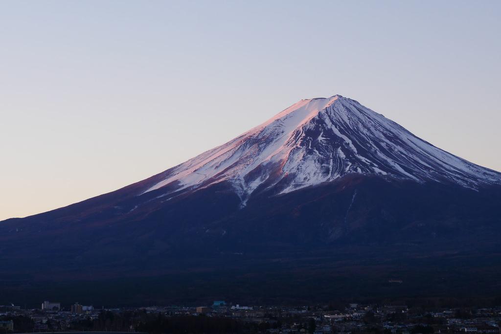 f:id:shamo-ji:20190128201724j:plain