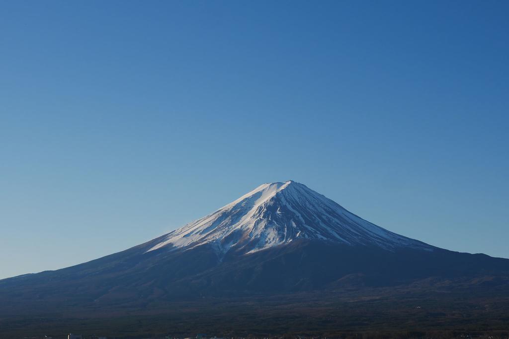 f:id:shamo-ji:20190128202142j:plain