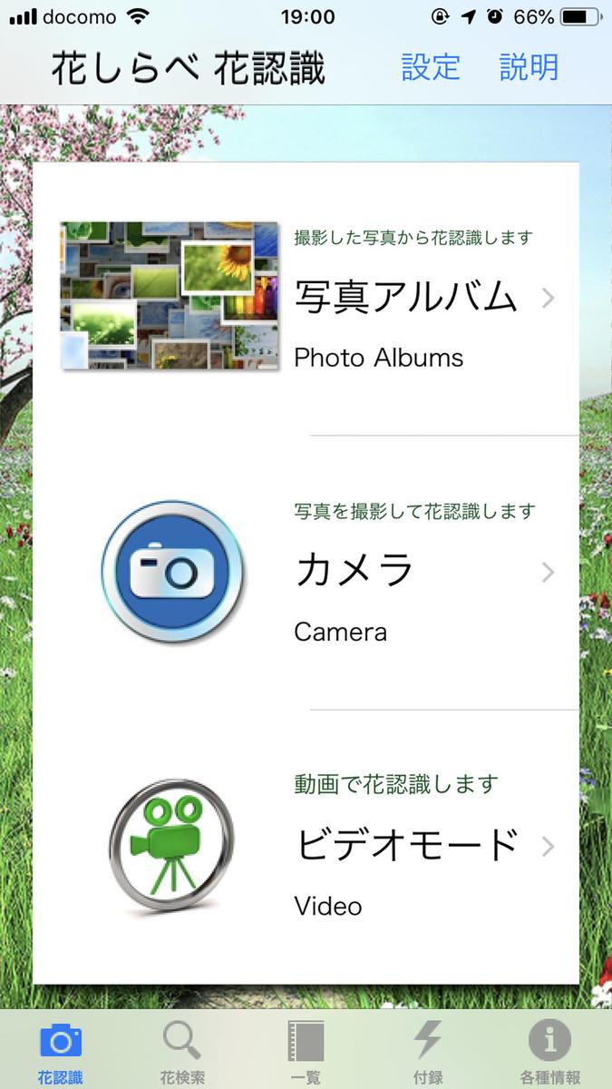 f:id:shamo-ji:20190601063404j:plain