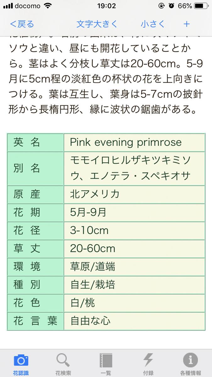 f:id:shamo-ji:20190601064318j:plain