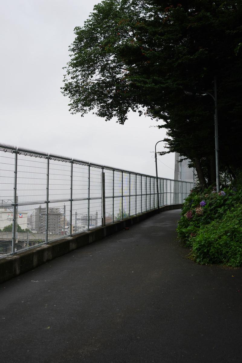 f:id:shamo-ji:20190723190052j:plain