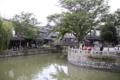 楓涇古鎭1