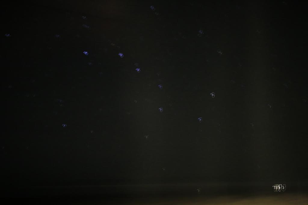 バスからの星撮影