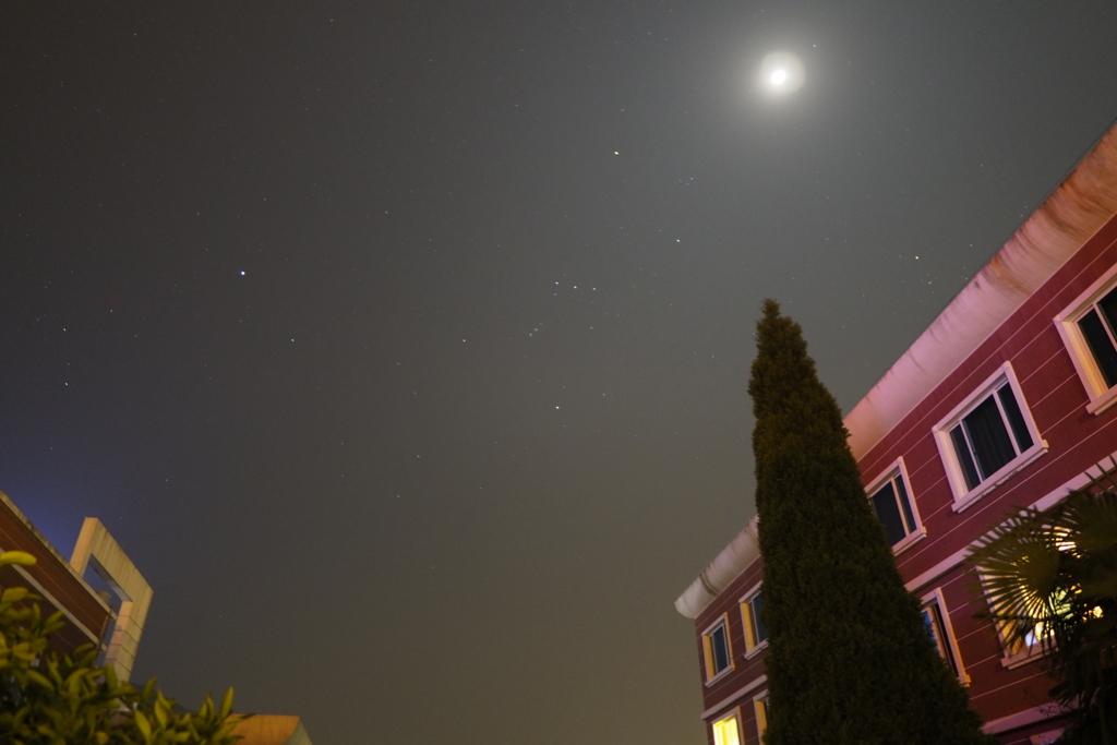 桃花島星の撮影