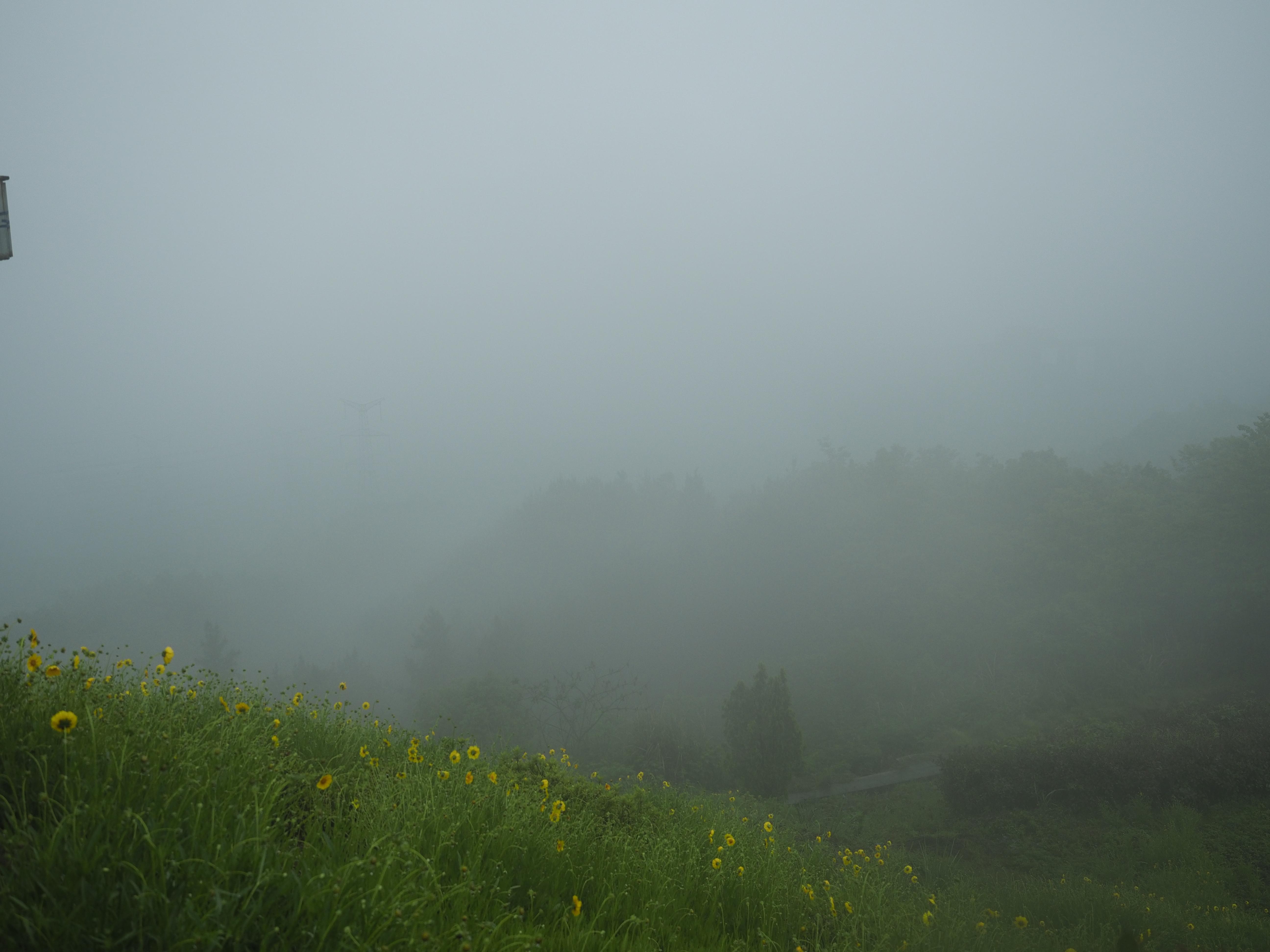 三峡ダムの全景