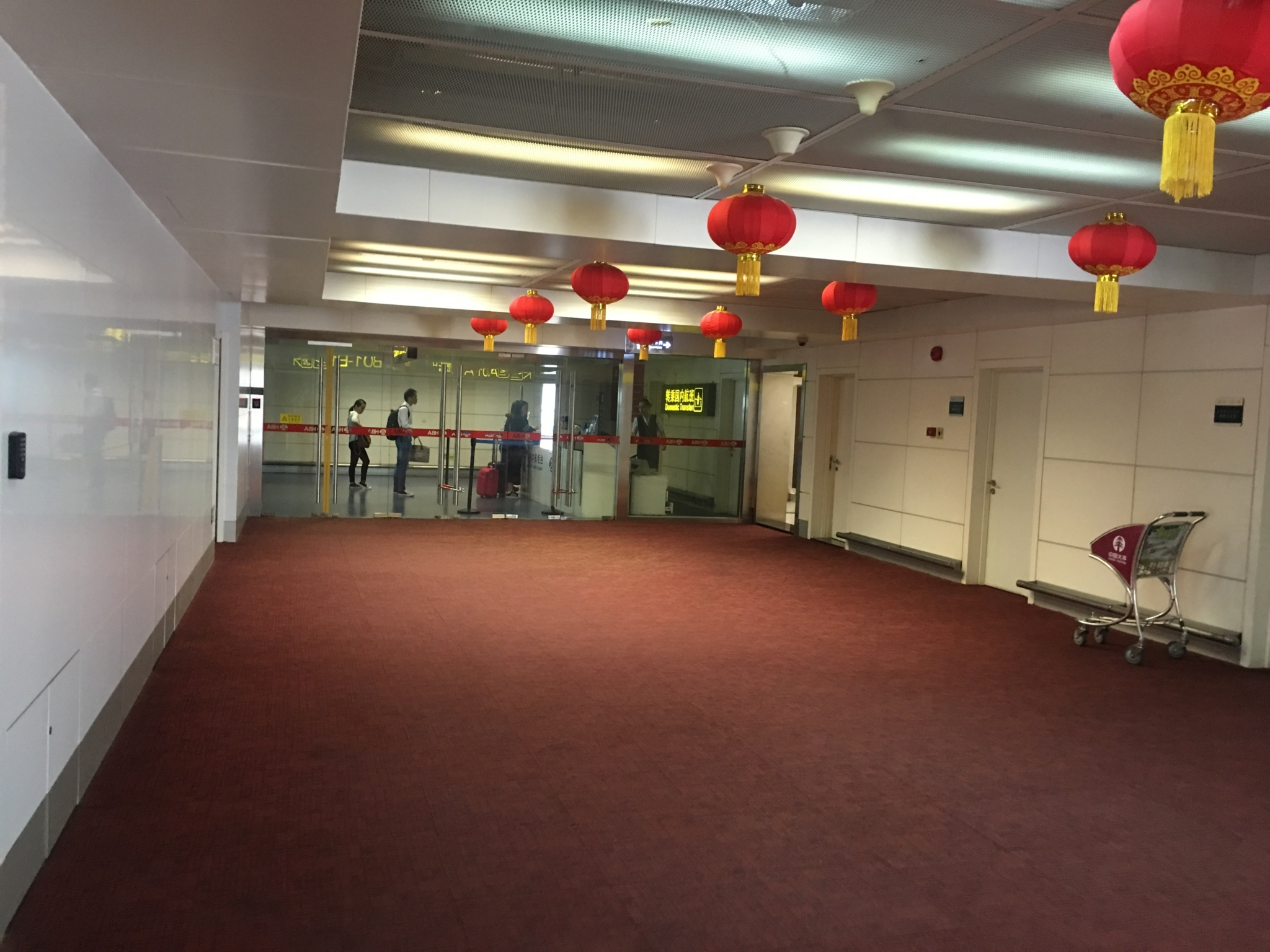 武漢天河国際空港