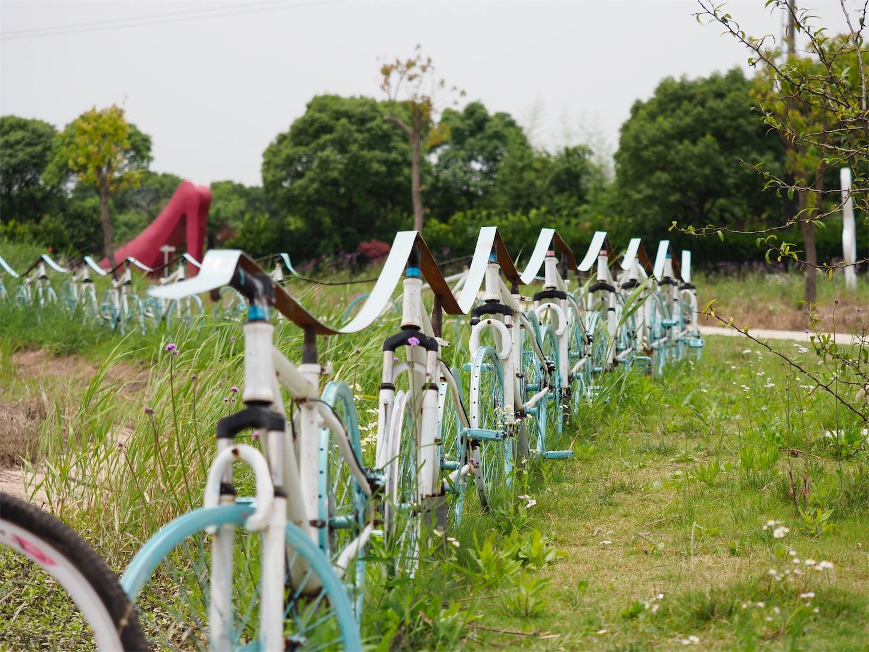 自転車いっぱい