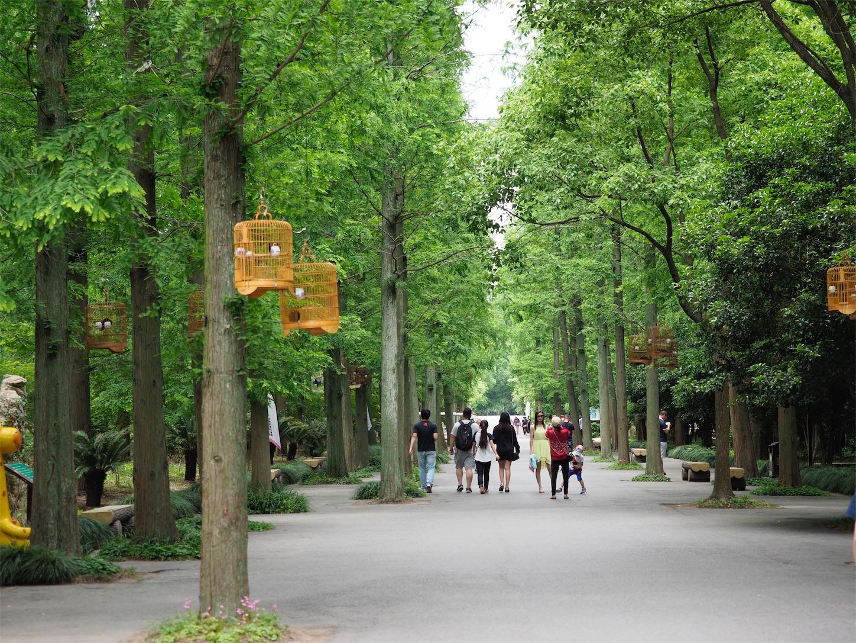 東平国家森林公園・入り口